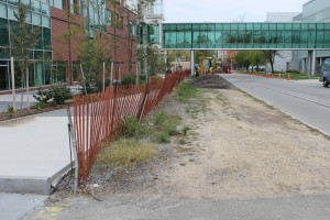 A linear park project at the Buffalo Niagara Medical Campus is behind schedule.