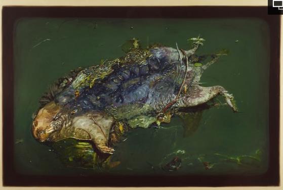 A dead muskrat, courtesy of Alberto Rey.