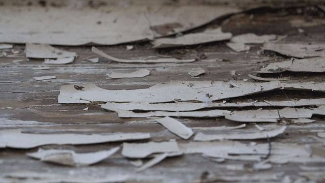 Lead paint chipping off a Buffalo home